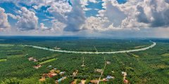 FAUZI_2-1_2019-06-08_[Group 1]-DJI_0001_DJI_0018-14 images_0000.jpg